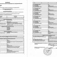 Выписки из ЕГРИП в Ростове-на-Дону